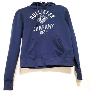 Hollister Hooded Pullover Sweater